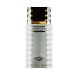 Perfume Lapidus Pour Homme Eau de Toilette 100ml